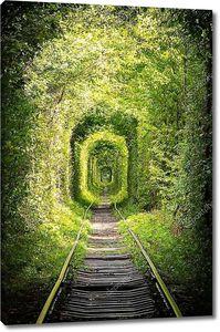 Дорога рельсовая в лесу