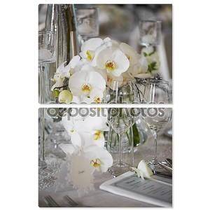 Свадебный прием с Цветочная композиция из белых орхидей