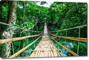 Бамбук пешеходный подвесной мост через реку