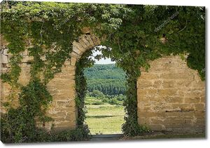 Old wall with arch