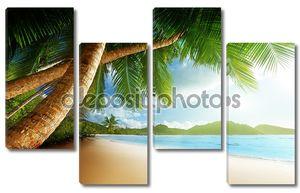 Две пальмы на берегу