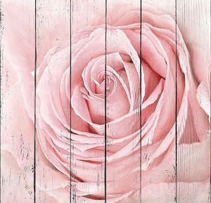 Свежая розовая роза