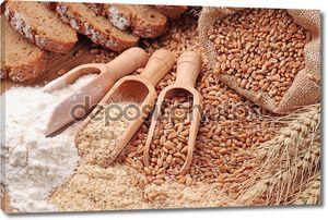 зерна пшеницы, отруби и мука