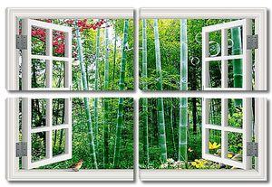 Бамбук в распахнутом окне