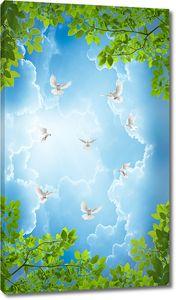 Небо обрамленное листвой