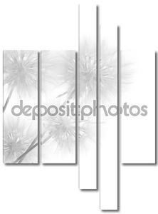 Букет одуванчиков на белом фоне