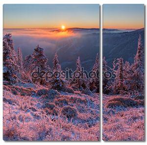 зимняя страна чудес