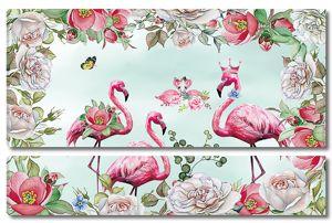 Царственные фламинго