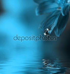 Капля воды падает лист
