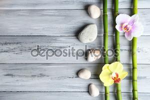 Цветы орхидеи на бамбуке