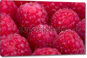 Макросъемки прекрасный выбор Свежесобранные спелых красная малина.