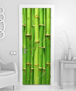 Бамбуковая стена крупно