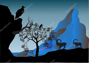 Силуэты диких gaot на скале
