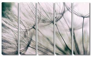 Винтажные  цветки одуванчика фон