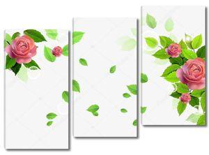 Белый фон с несколькими розами