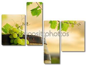 бочка вина, винограда и виноградной лозы
