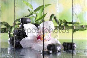 Камни спа и белая орхидея