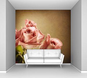 Красивые розовые розы. Винтажном стиле. Сепия тонированное