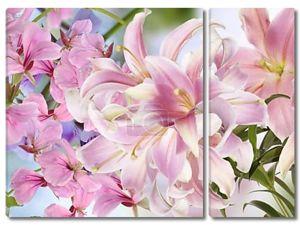 фон светло розовый lily.floral