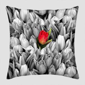 Черно белые тюльпаны с одним красным цветком