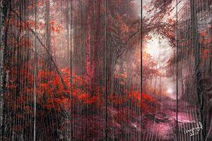 Красный осенний лес