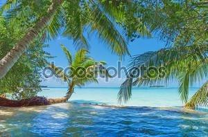 Мальдивы с пальмы, песок и океан