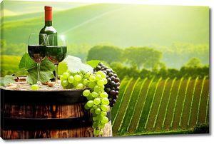 Бокалы вина на фоне виноградника