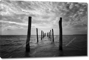 Черный и белый пейзаж с деревянными колоннами в качестве ведущих линий