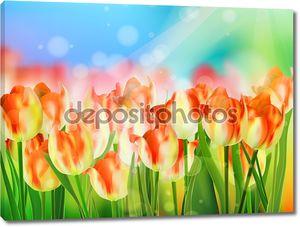 Красный тюльпан с боке. EPS 10