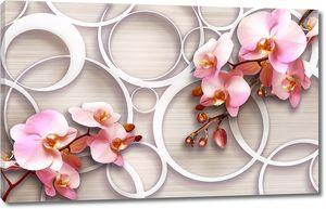 Орхидеи на фоне кругов