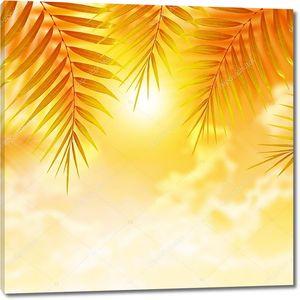 Пальмовые листья на фоне заката