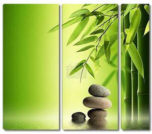 Листья бамбука и камни