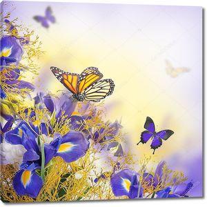 букет синих ирисов, белых цветов и бабочки