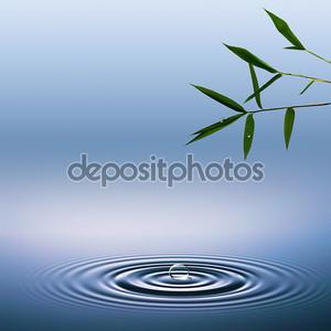 Абстрактные фоны окружающей среды с бамбука и вода капли