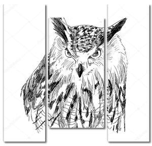Эскиз совы на белом фоне