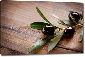 Веточка с оливками на деревянном столе
