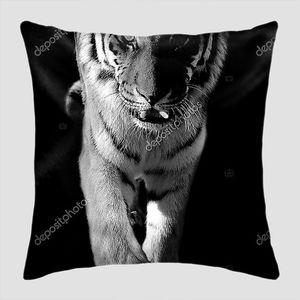 Дикий тигр фото в рост