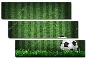 Футбольный мяч на поле трав
