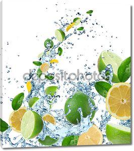 Свежие цитрусовые в плеск воды