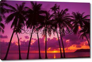 пальмовых деревьев силуэт на закате на тропический остров, Таиланд