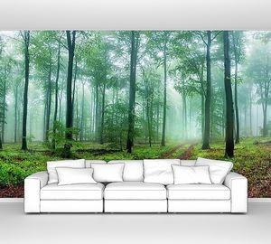 Мечтательный панорамный пейзаж леса с тропинкой, приглашающей на расслабляющую прогулку, с красивым мягким светом и туманом