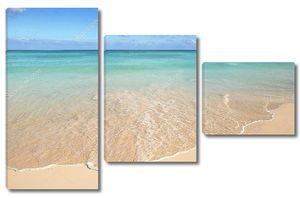 Песок морской раковины starfish тропической бирюзовый Карибского