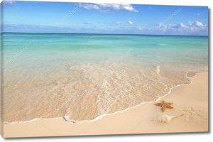 Песок с морской звездой