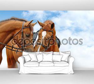 Две лошади щавель