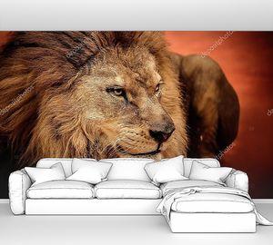 Лев на арене