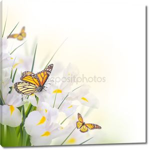 Желтые ирисы с Желтые ромашки с бабочками