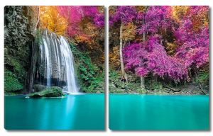 Водопад с розовыми деревьями