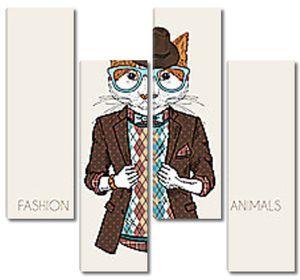 Модный котик