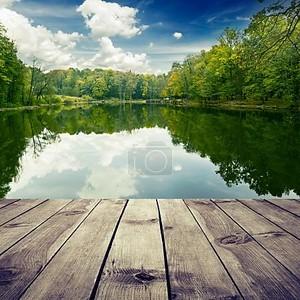 Красивый лес с отражением в воде