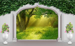 Залитая солнцем поляна из арки